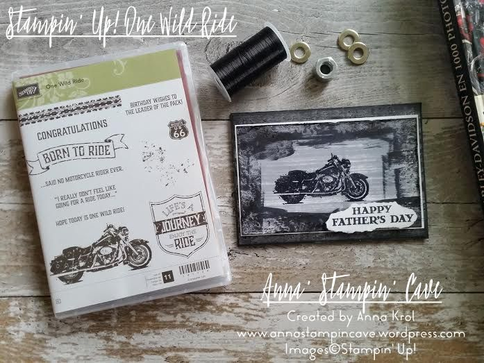 One Wild Ride Stamp Set
