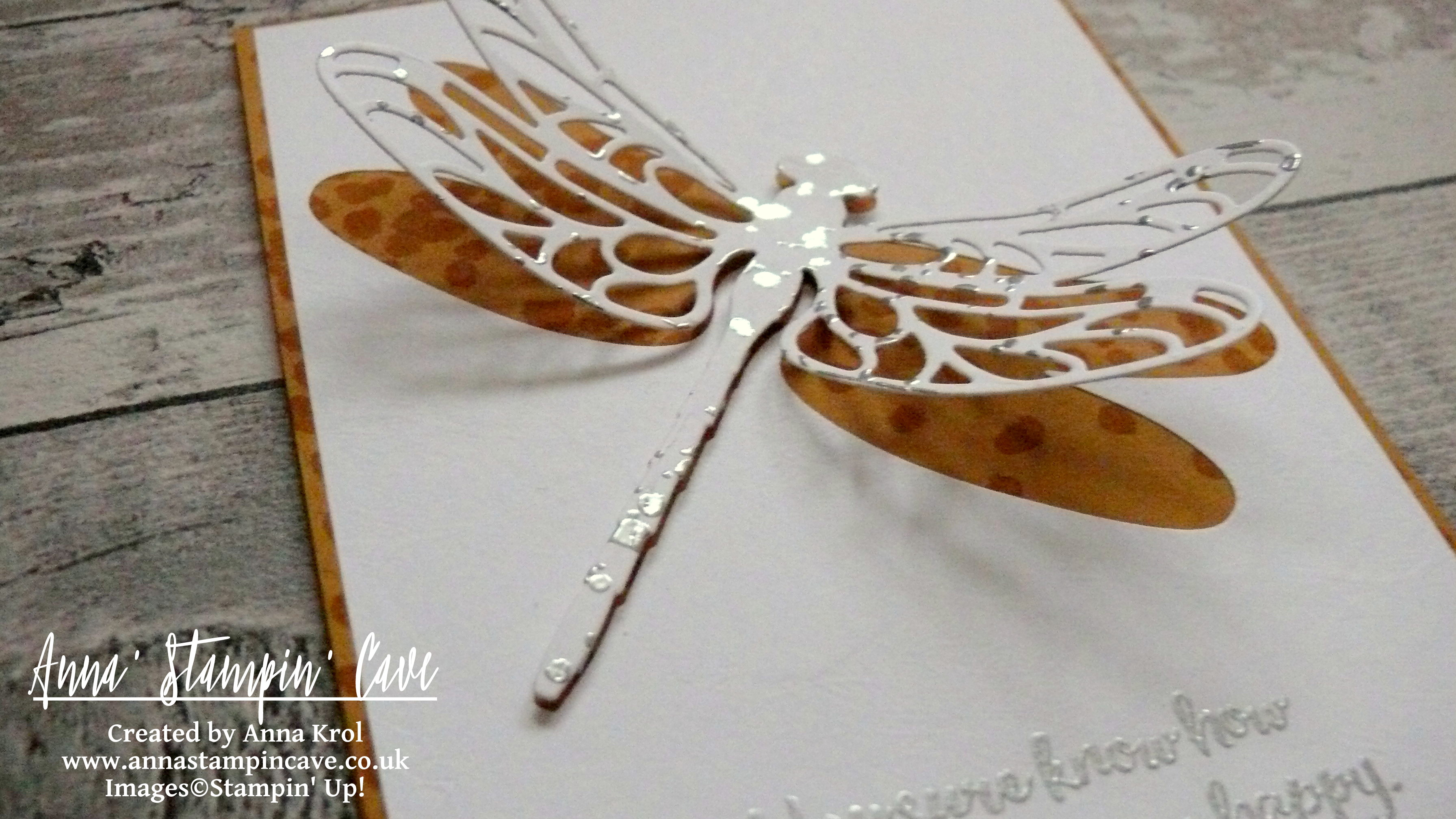 Anna' Stampin' Cave Dragonfly Dreams Bundle Clean and Simple Card.JPG