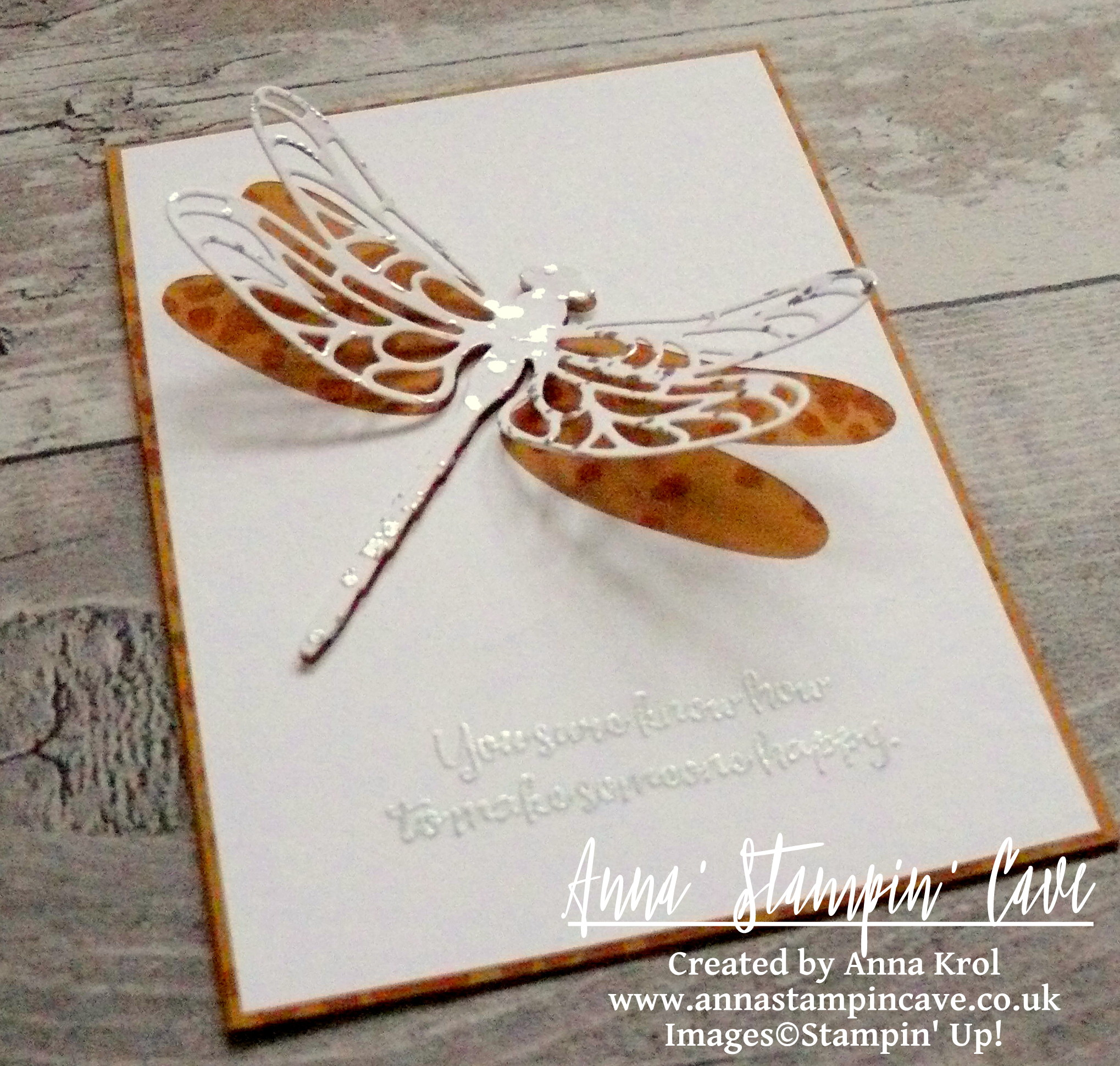anna-stampin-cave-stampin-up-dragonfly-dreams-bundle-cas