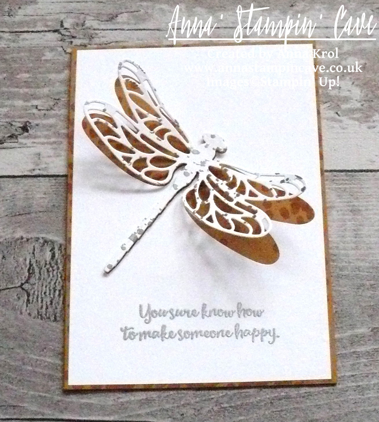 anna-stampin-cave-stampin-up-dragonfly-dreams-bundle-clean-and-simple-card