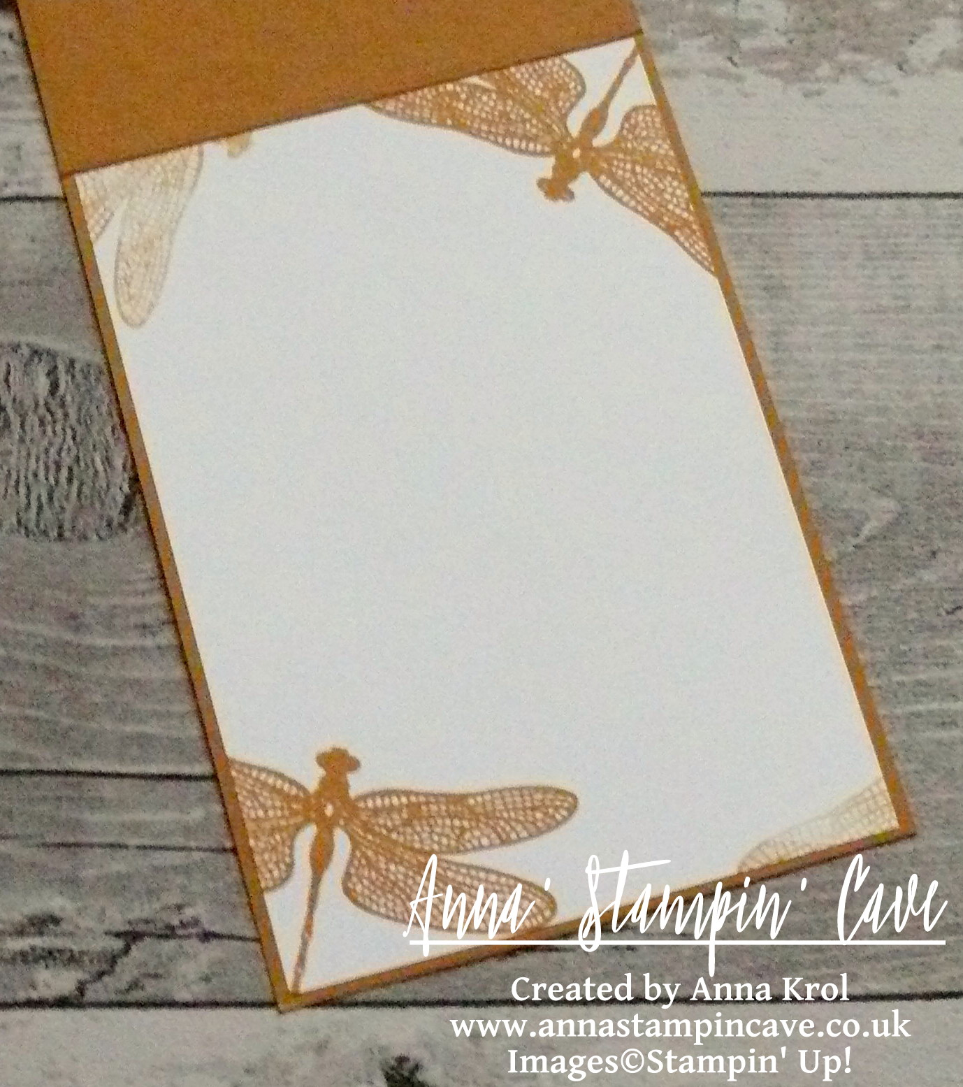 anna-stampin-cave-stampin-up-dragonfly-dreams-bundle-clean-and-simple-card-inside
