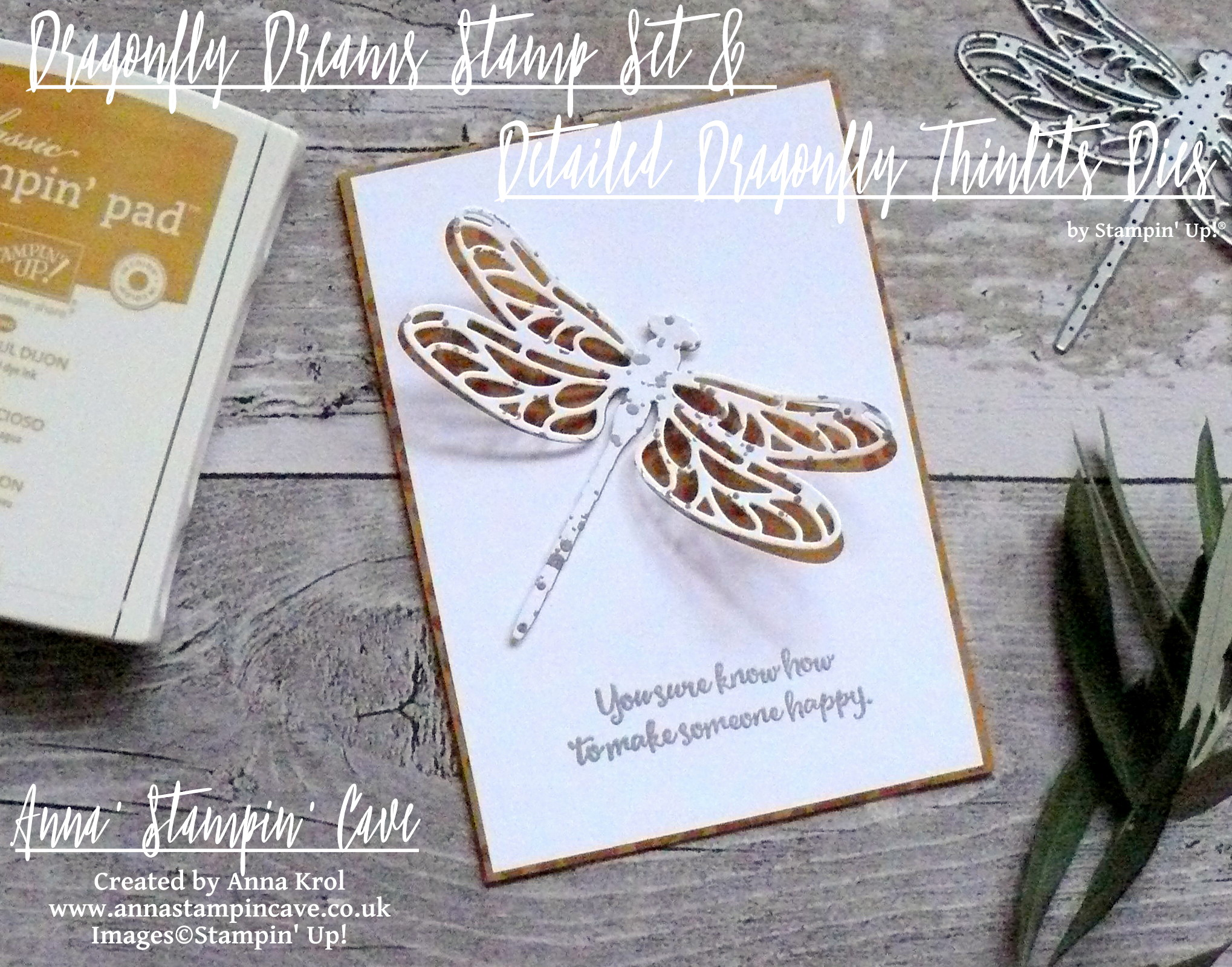 anna-stampin-cave-stampin-up-dragonfly-dreams-stamp-set-and-dies-bundle-clean-and-simple-card