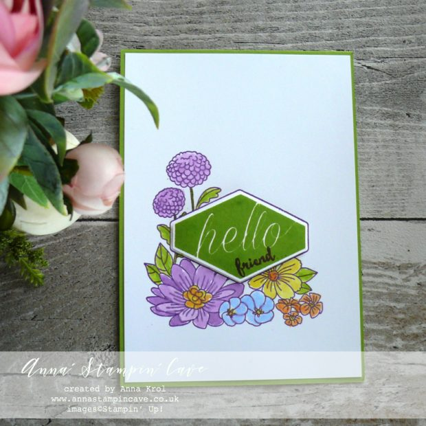 Anna' Stampin' Cave - Soft Watercolours using Accented Blooms Stamp Set with Tailored Tag Punch from Stampin' Up!